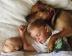 Mascotas en casa si tienes bebés